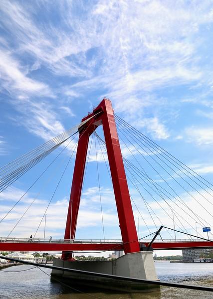 Williams Bridge - Rotterdam