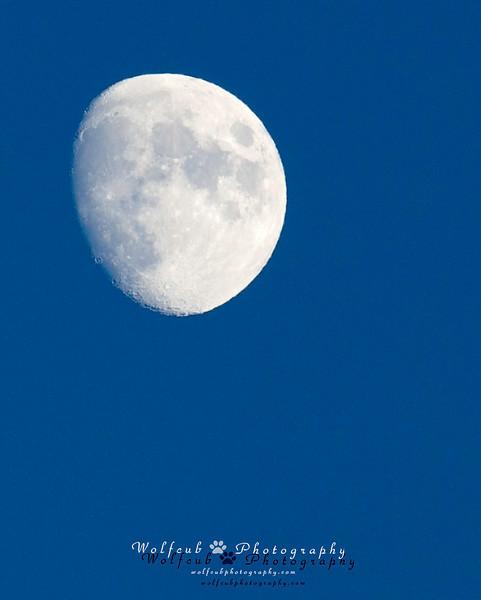 20141202-Moon.jpg