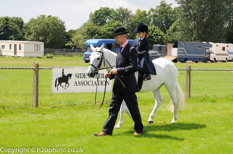Area 8 SSA - Summer Show (Ardingly - 25-Jun-16)