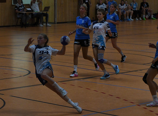 Frauen TSV 1 vs Steinsfurt