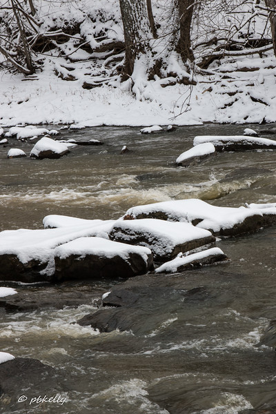 1-30-17.  Snowy rocks in the cold river.