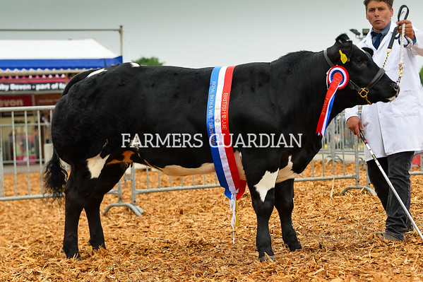 Royal Bath and West Show 2018