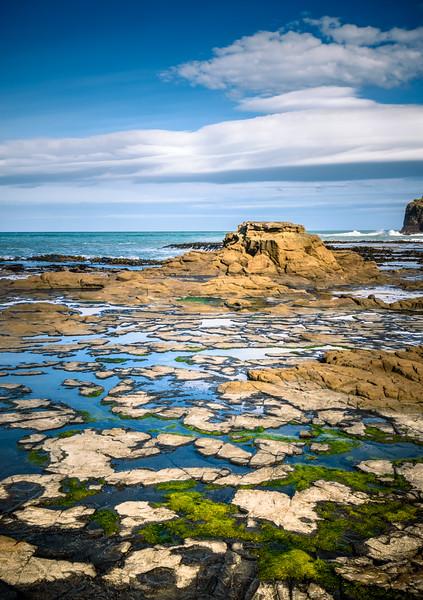 CATLINS Curio Bay