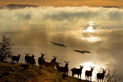 saturna Island Images