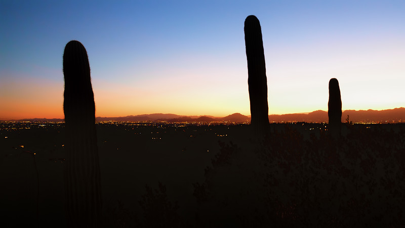 Tucson city lights at twilight