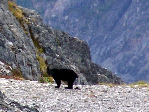 Alaska August 2005
