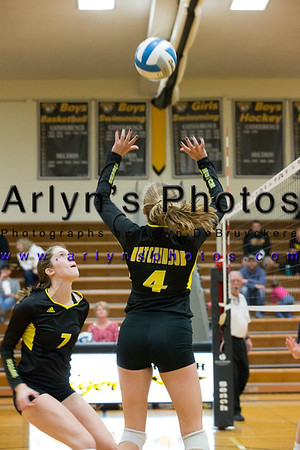 Hutch Volleyball vs Chanhassen