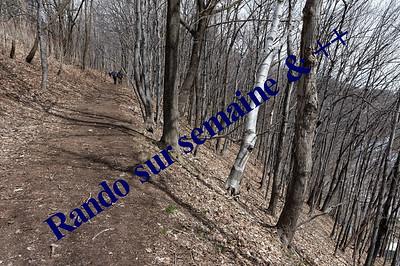 Sentier_La_corniche_de_Sillery