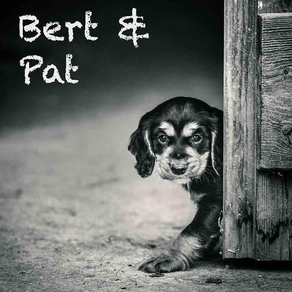 Bert-Gallery.jpg
