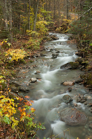 Vermont Color 2010