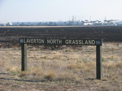 Laverton North Grasslands