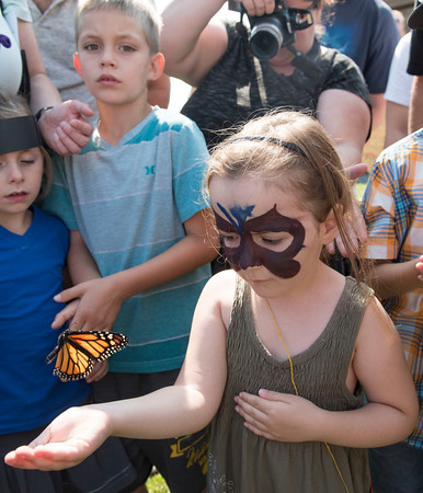 DAVID LIPNOWSKI / WINNIPEG FREE PRESS  Amelia Borduas (age 5) releases a Monarch butterfly at The Living Prairie Museum during the 10th annual Monarch Butterfly Festival Sunday July 17, 2016.