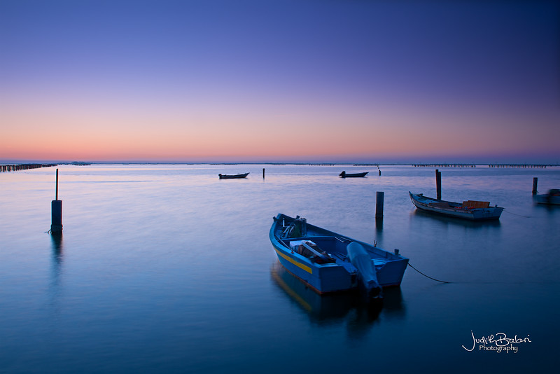 Scardovari lagoon, Italy
