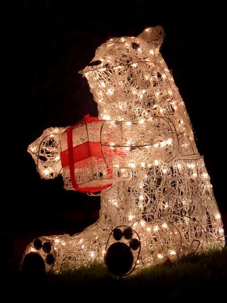 Christmas 2011 023.JPG