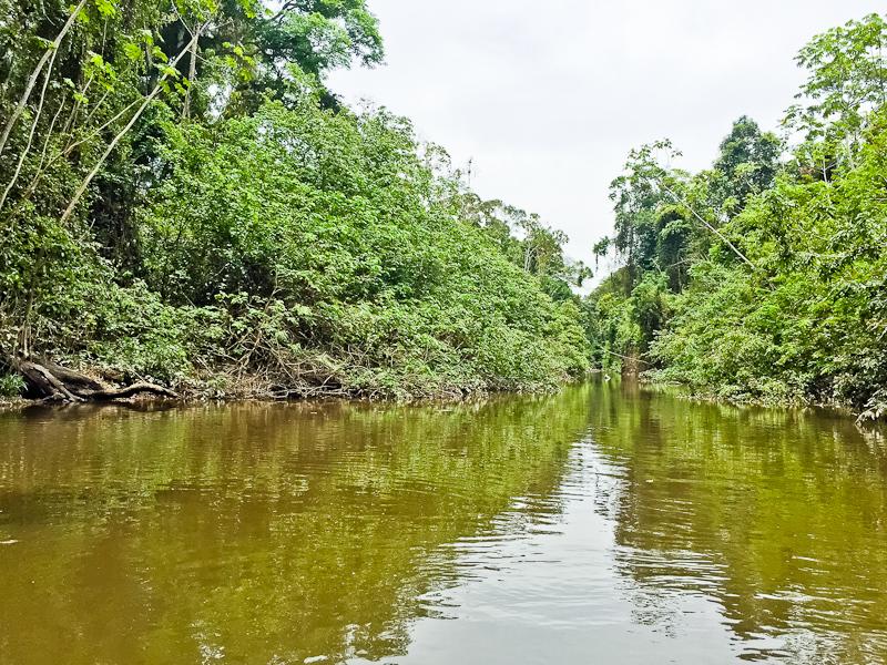 Travel to Guyana South America