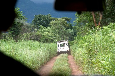 Central Africa - July 2009