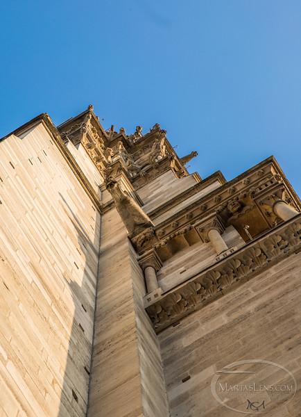 Notre Dame, Paris-12.jpg
