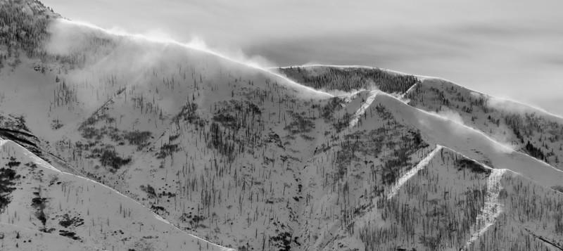 Sundance-25.jpg