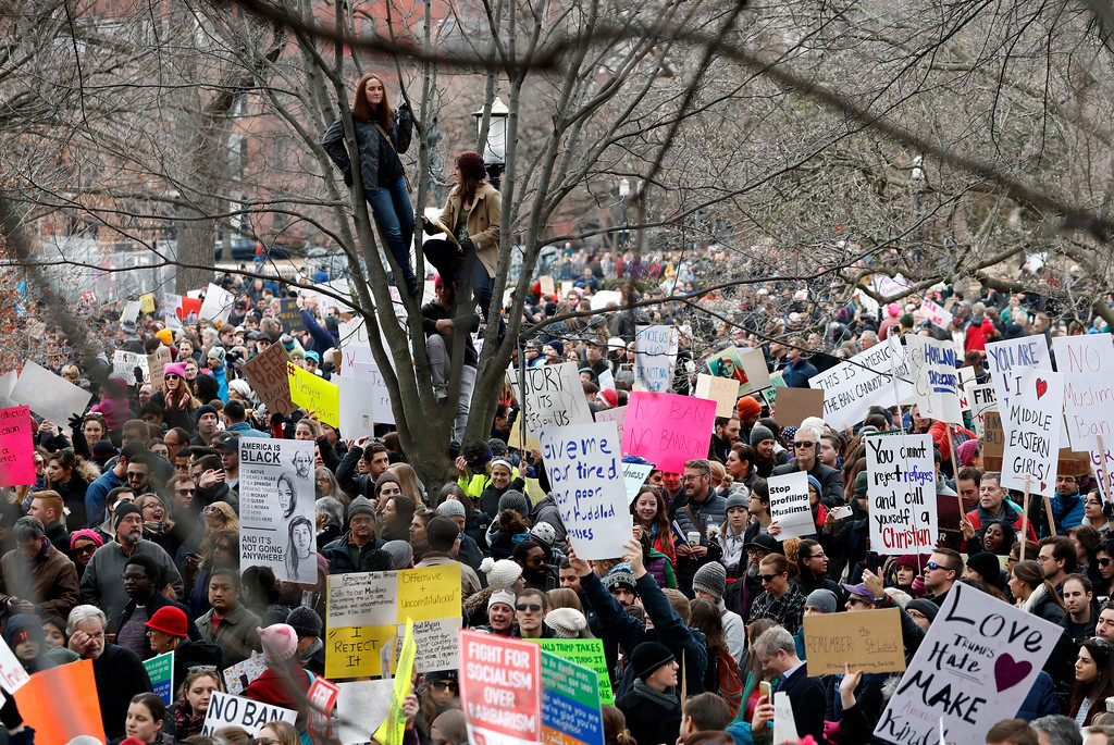 . People sit in a tree above protesters carrying signs and chanting in Lafayette Park near the White House during a demonstration to denounce President Donald Trump\'s executive order that bars citizens of seven predominantly Muslim-majority countries from entering the U.S. on Sunday, Jan. 29, 2017, in Washington. (AP Photo/Alex Brandon)