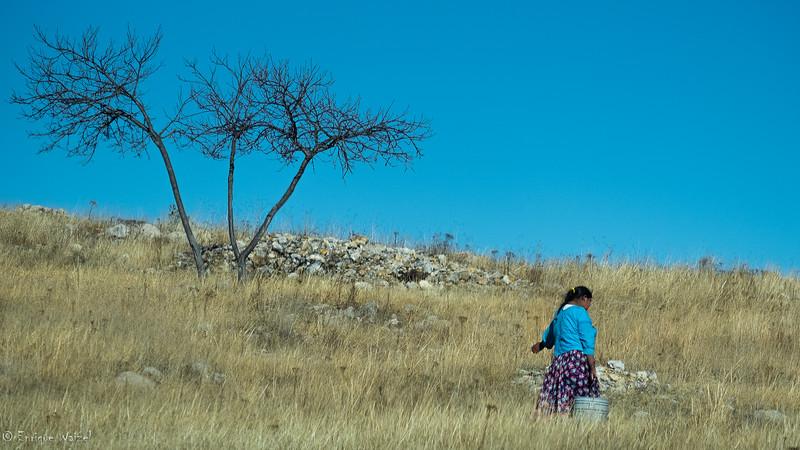 Tarahumara por agua.jpg