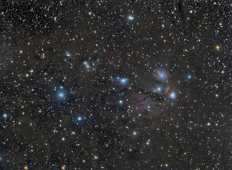 A-DS-Lynn Hilborn-NGC 2170