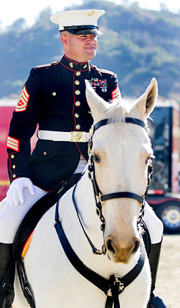A mounted Marine out of Barstow, CA. The Marine's mount is a wild mustang recruited from the BLM's mustang rescue program.