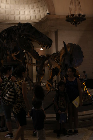 20160929_NATURAL HISTORY MUSEUM LOS ANGELES-FIELD TRIP
