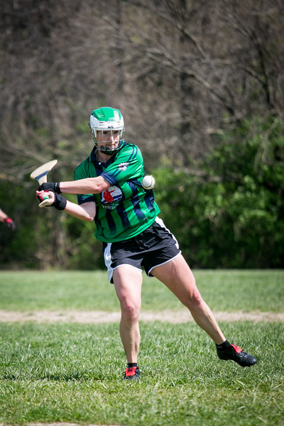 Hurling, AOH St. Charles, Tigin, 2017 (52 of 325).jpg