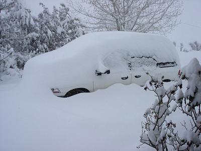 Phelan Snow