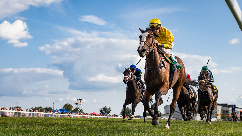Lull (War Front), Brian Hernandez up, wins the Kentucky Downs Ladies Sprint 9.09.17. Christophe Clement trainer, Claiborne Farm and Adele Dilschneider owners.