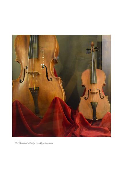 Violin Museum - Fondazione Stradivari – Museo del Violino, Cremona, Italy