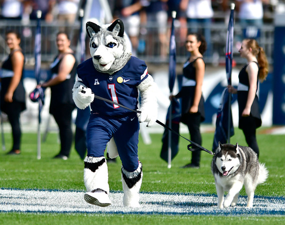 9/7/2019 Mike Orazzi | StaffrSaturday's UConn football game with the University of Illinois at Rentschler Field in East Hartford.