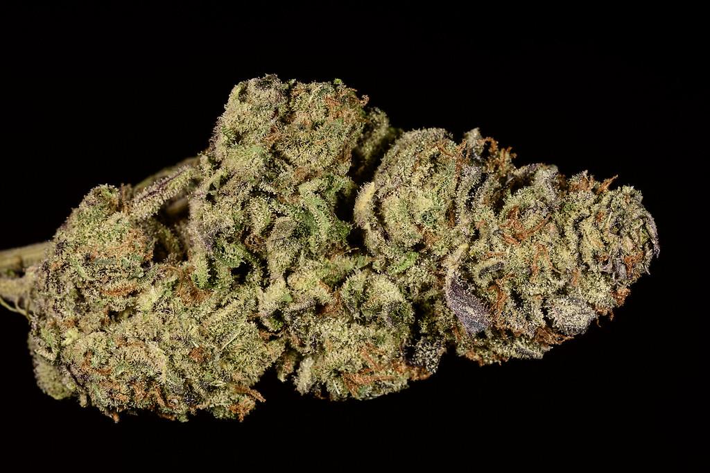 . No. 25: Flo (Ry Prichard, The Cannabist)