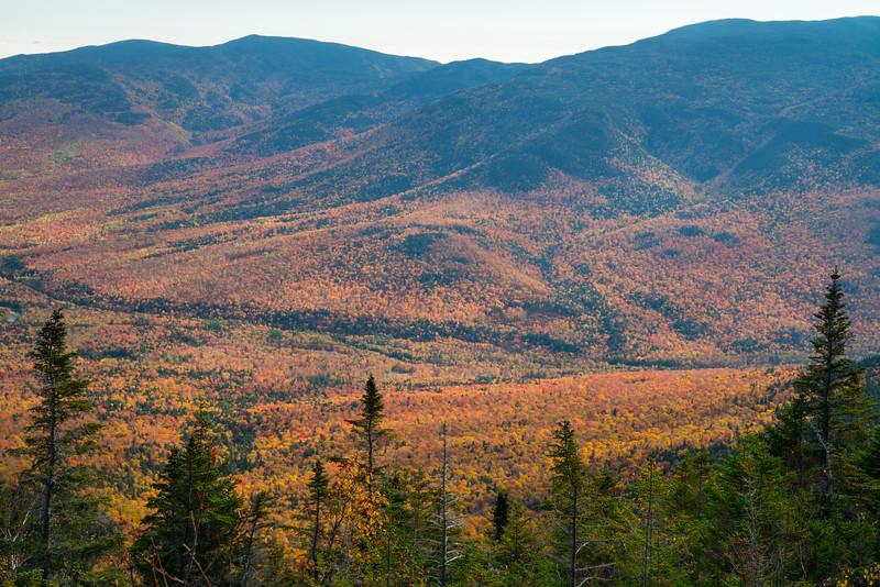 Maine Fall 2019-33.jpg