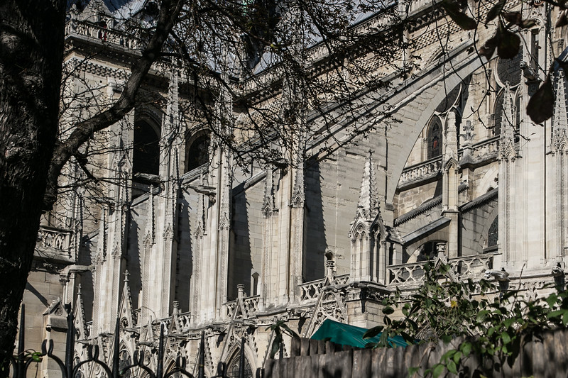 Paris, Notre-Dame Cathedral Flying Buttresses