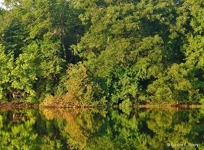 2016-08-27 Colleyville Nature Center