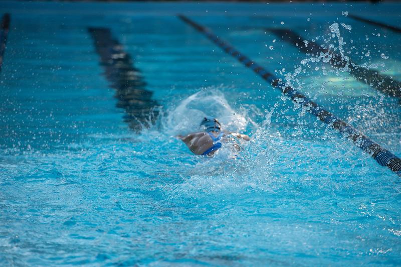lcs_swimming_kevkramerphoto-109.jpg