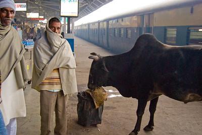 12/20 -  Drive to Khajuraho