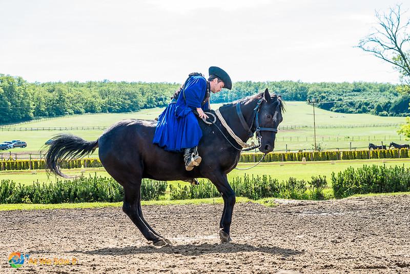 Hungarian_Horsemen-07716.jpg