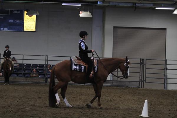 Champion Senior Western Horsemanship