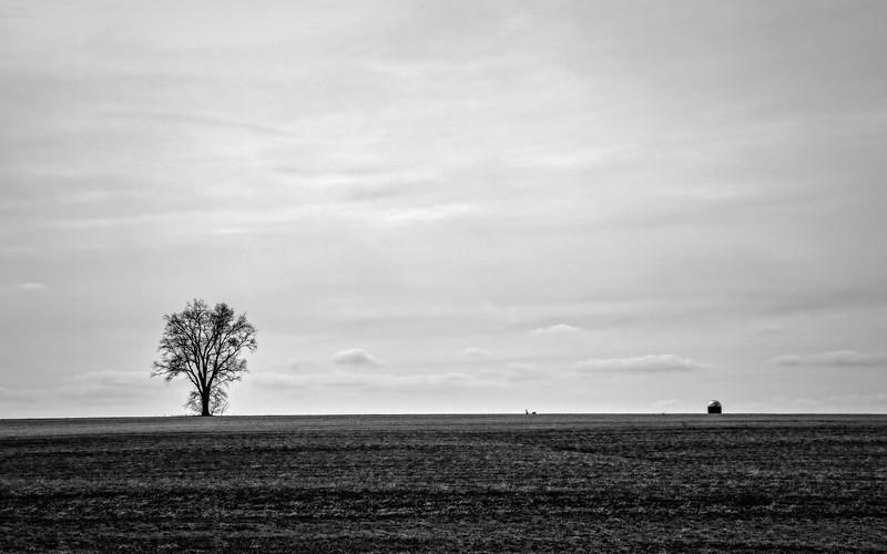 bw landscape minimal-.jpg