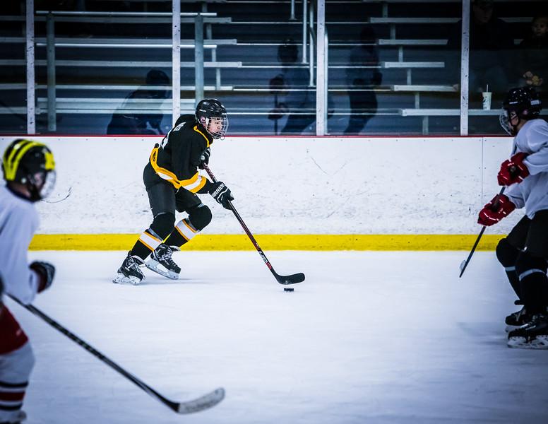 Bruins2-360.jpg
