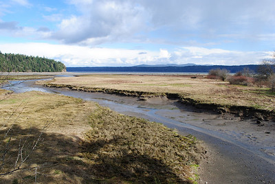 Olympic Peninsula Weekend (March 2011)