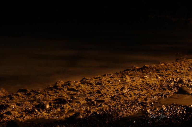 FRANK BAY AT NIGHT