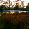 SunsetMundenPointPark-109