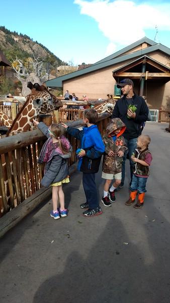 Cheyenne Mountain Zoo October 2017