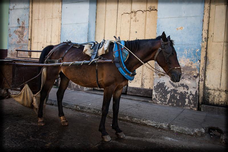 Cuba-Havana-IMG_0673.jpg