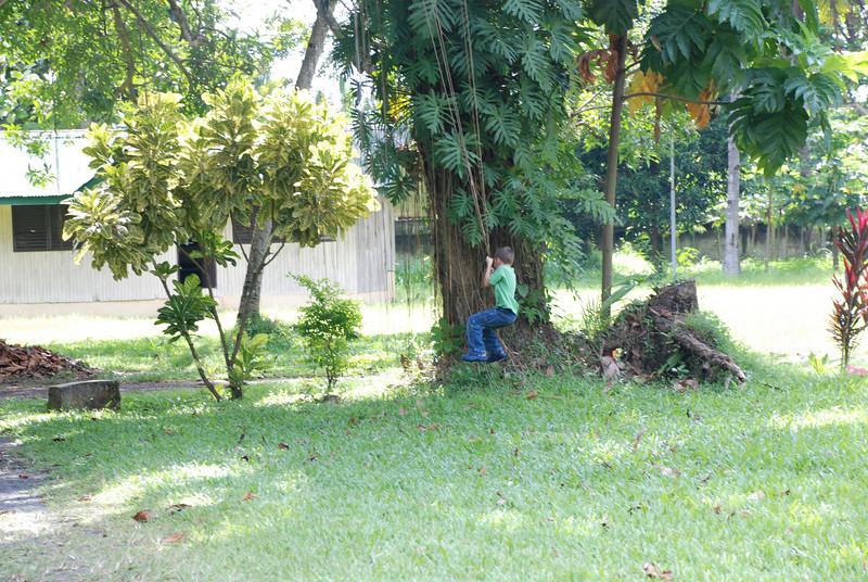 Pictures 08 10-07-08 thru 11-14-08 141.JPG