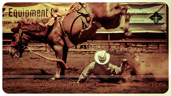 2012 Saddle Bronc Riding