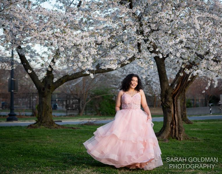cherry blossoms dc quinceanera portraits (10).jpg
